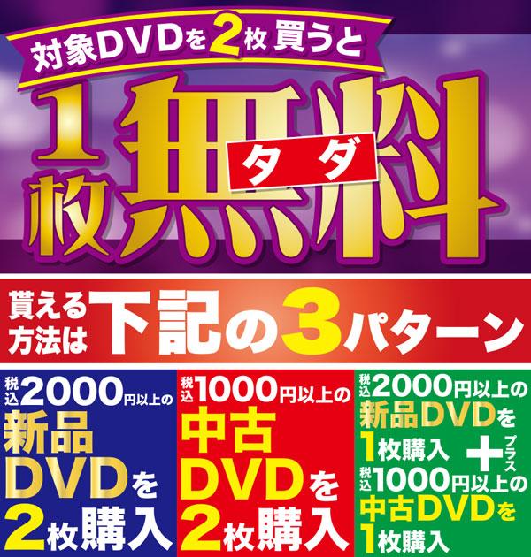 DVD無料