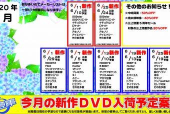 最新!?DVD新作入荷日予定表